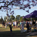 Jensen supporting cricket - Jensen Property - Real Estate Inner City South